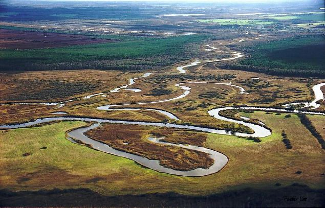 "HAPPYFISH: LIFE+ project ""Saving life in meanders and oxbow lakes of Emajõgi River on Alam-Pedja NATURA 2000 area"""