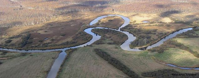 The oxbow lakes of River Emajõgi